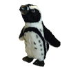 African Penguin plush toy.