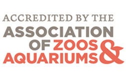 Logo for Accredited by the Association of Zoos and Aquariums.