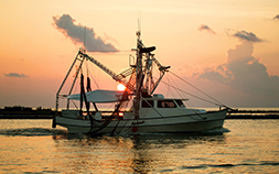 A shrimp boat glides along the Gulf of Mexico at sunset.