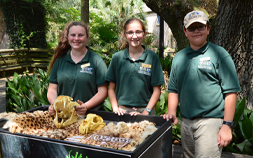 Smiling youth volunteers show off the training cart at the Audubon Zoo.