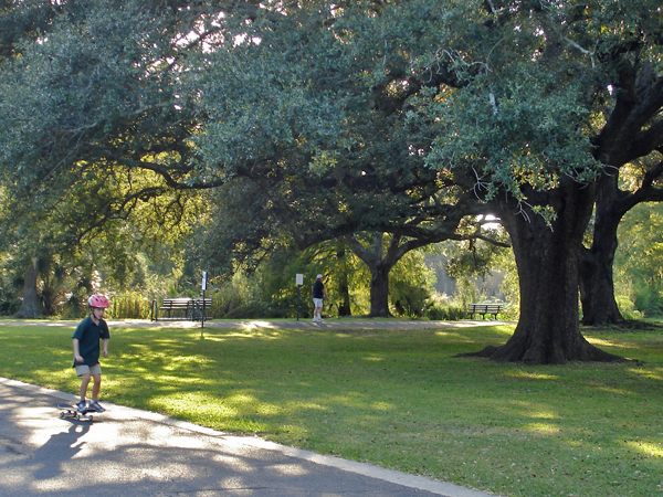 A child skateboards along the path in Audubon Park canopied by majestic oaks.