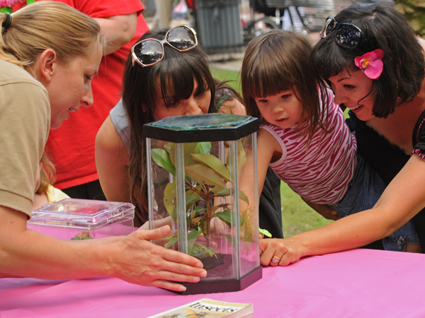 A group of children inspect insects in a terarium at the Audubon Butterfly Garden and Insectarium.