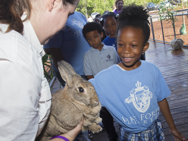 A small child in a blue shirt reaches out to pet a fluffy rabbit that an Audubon Nature Institute Animal Ambassador holds.
