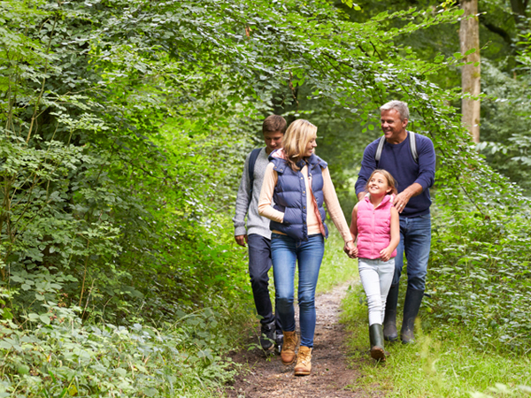 A family of 4, an adult man and woman and a girl and boy, hike along a green tree-lined wilderness trail.