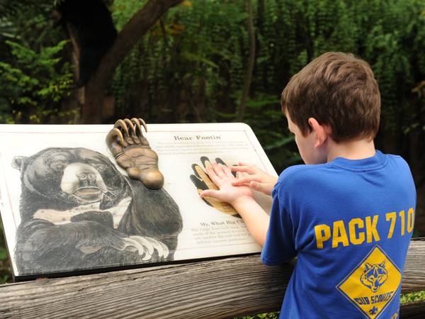 Image Of Educational Family Things To Do In New Orleans At The Zoo - Audubon Nature Institute