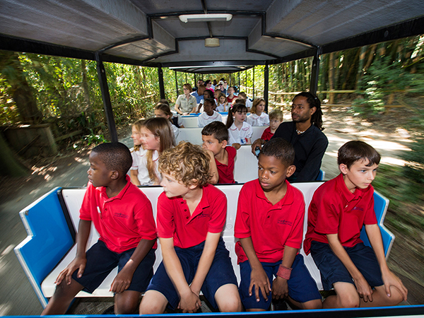 A group of kids rides the Swamp Train at Audubon Zoo.