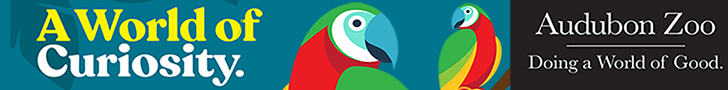 world_of_good_ad_macaw_728x90