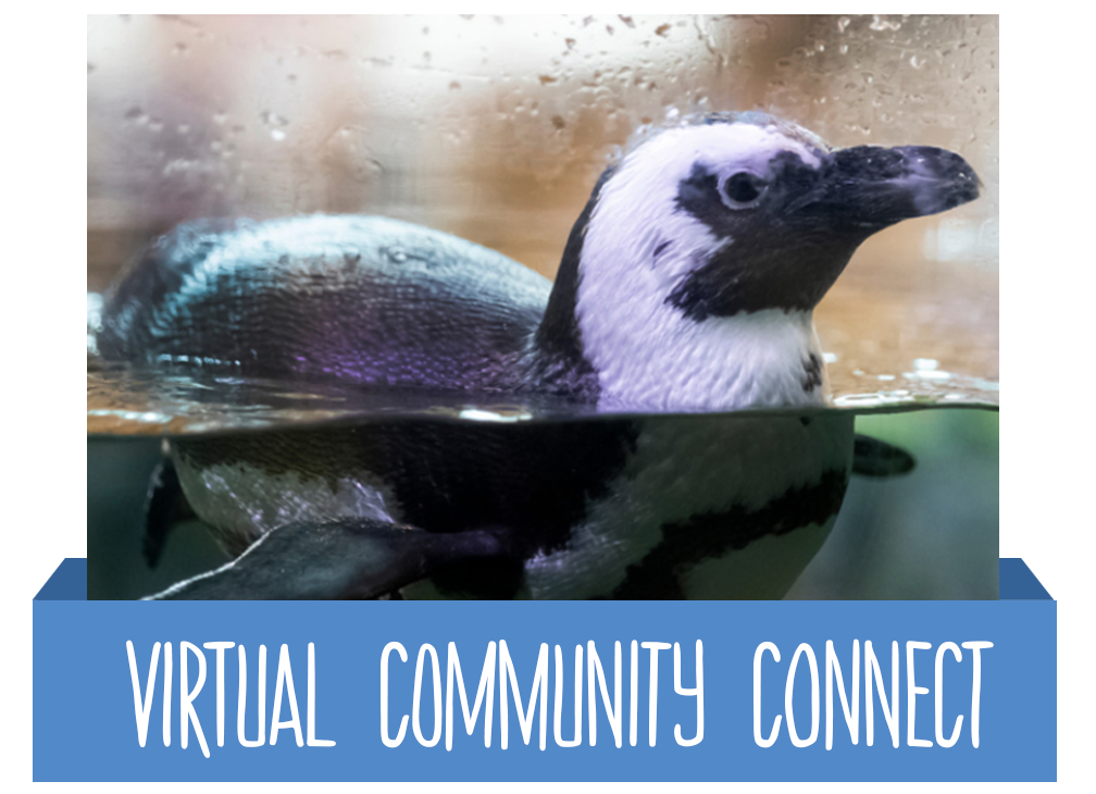 Virtual Community Connect Button