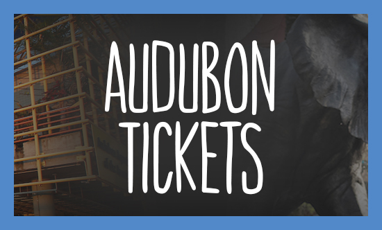 Audubon Tickets