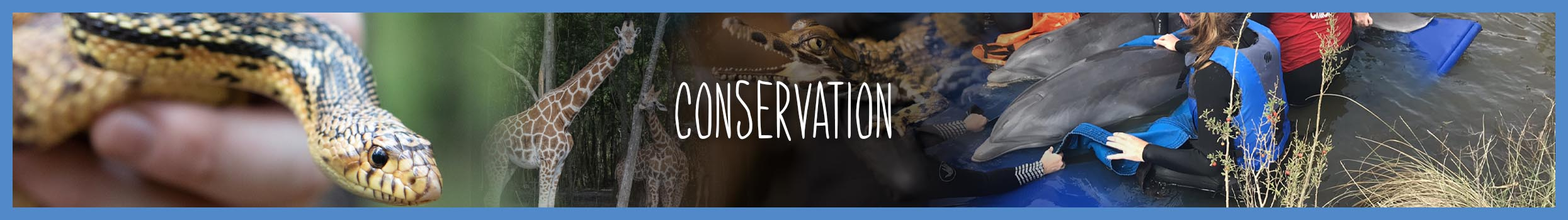 conservation-main-header-slider