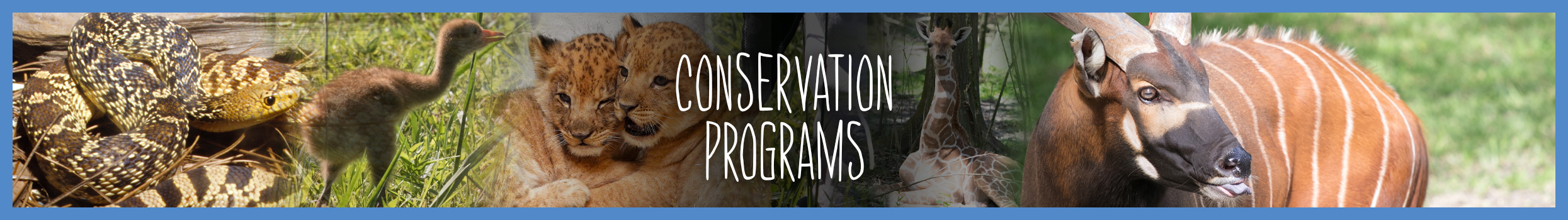 conservation-programs-header-slider