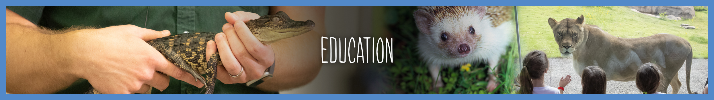 education-main-header-slider2