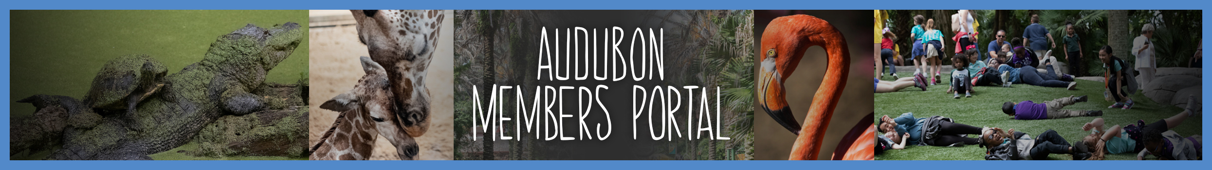 header_-_Audubon_Members_portal_page