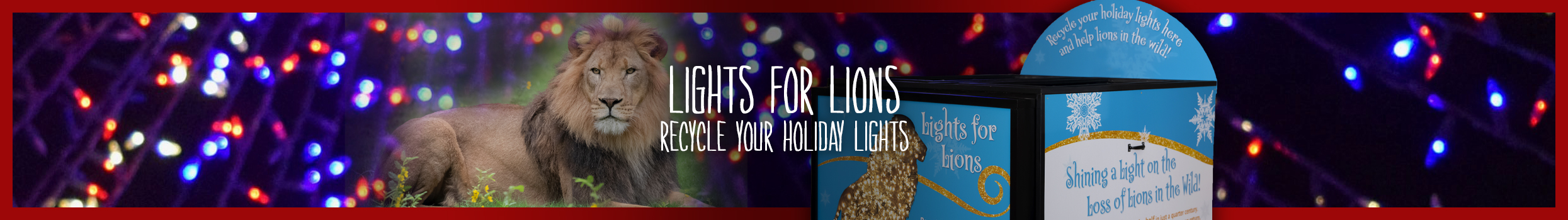 lights-for-lions-header-slider