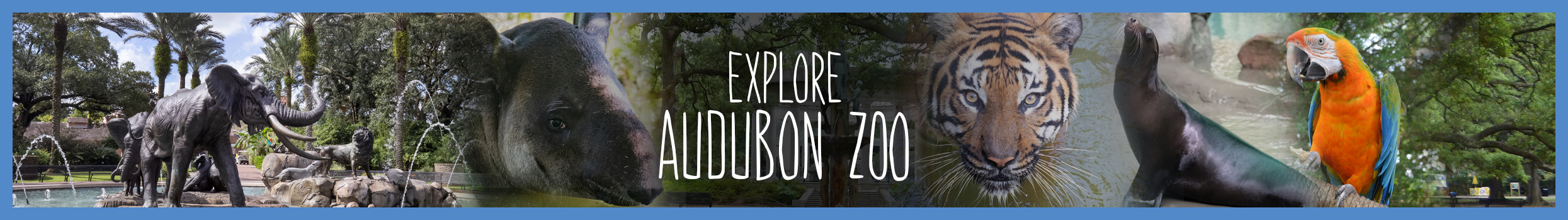 zoo-explore-header-slider