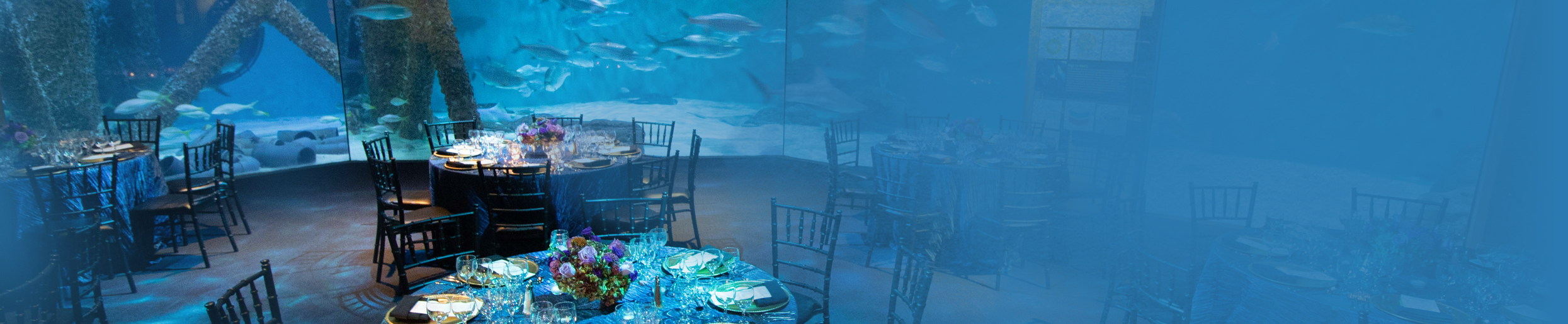 private-events-aquarium-2490