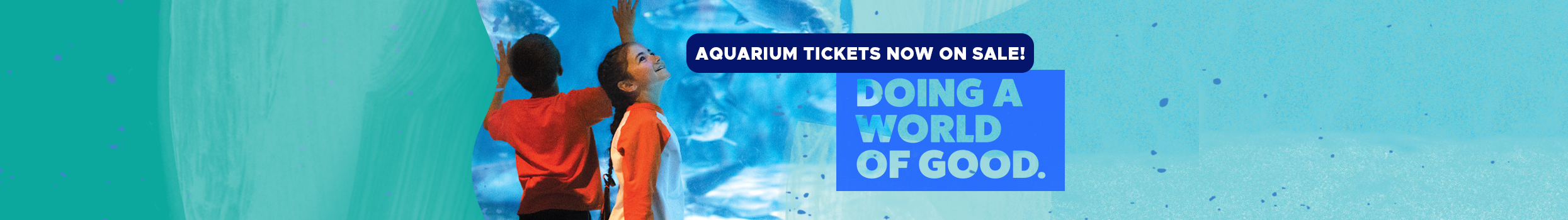 recovery-aquarium-2490-tickets-long