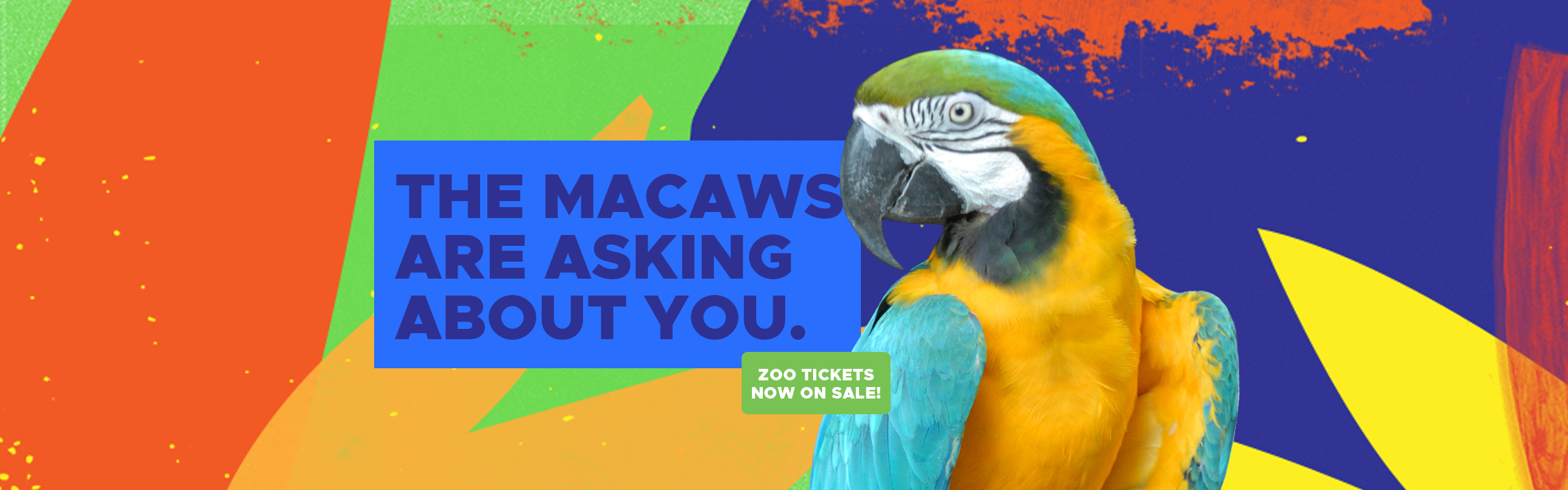 reopen-macaws-2490-tickets